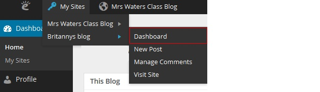 Student blog (My Sites menu)