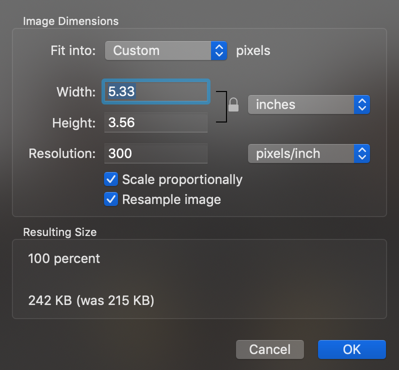 Preview application with the Adjust Size tool opened.