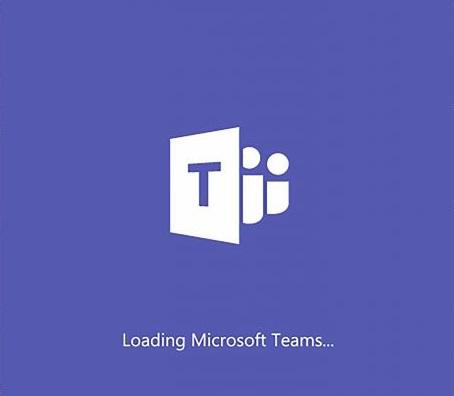Run the Teams installer
